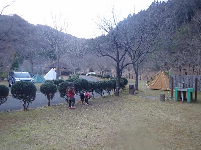 f:id:mochikichi-blog:20200610214113j:plain