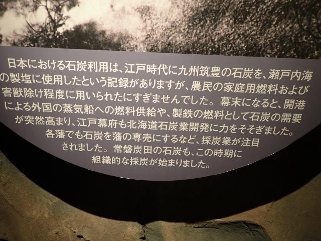 f:id:mochikichi-blog:20200610223801j:plain
