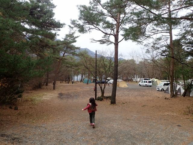 f:id:mochikichi-blog:20200611111300j:plain