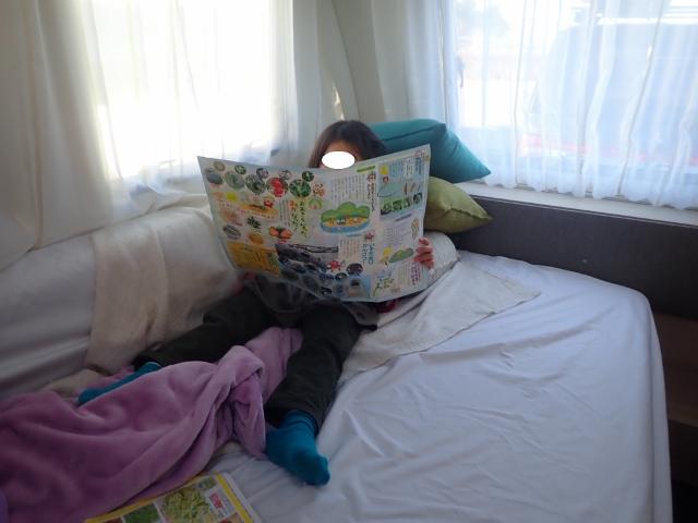 f:id:mochikichi-blog:20200611113132j:plain