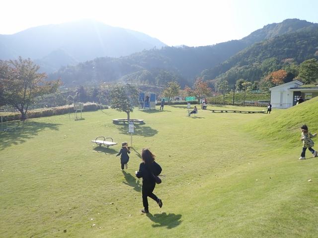 f:id:mochikichi-blog:20200611141137j:plain