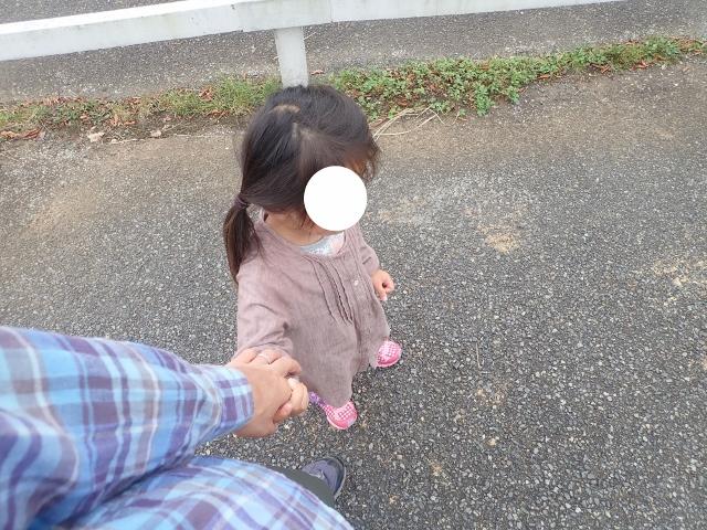 f:id:mochikichi-blog:20200611155949j:plain