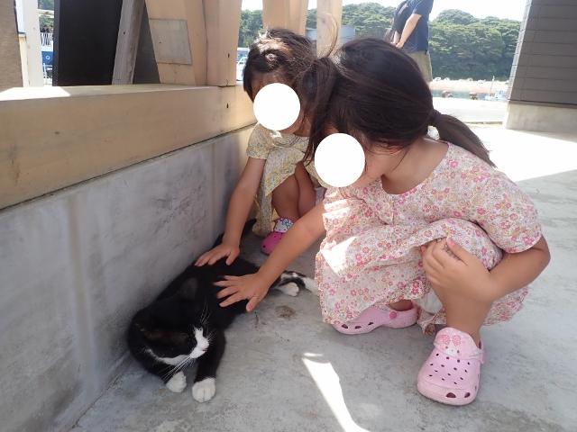 f:id:mochikichi-blog:20200611163719j:plain