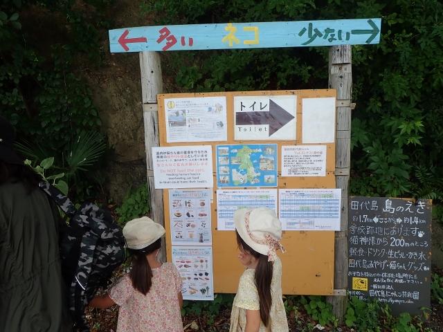 f:id:mochikichi-blog:20200611163741j:plain