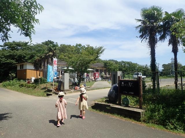 f:id:mochikichi-blog:20200611163813j:plain