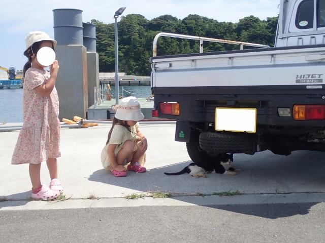 f:id:mochikichi-blog:20200611163849j:plain
