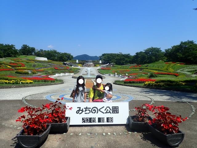f:id:mochikichi-blog:20200611203754j:plain