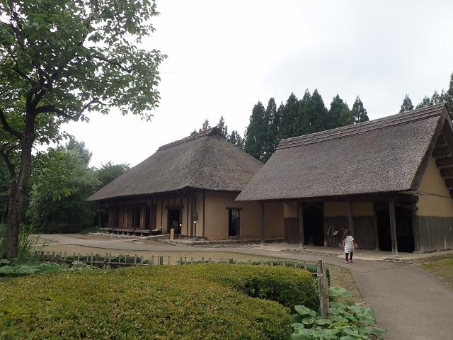 f:id:mochikichi-blog:20200611212305j:plain