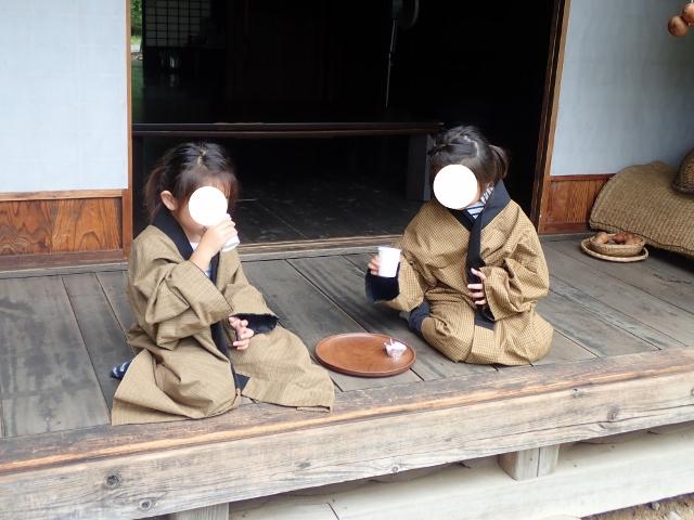f:id:mochikichi-blog:20200611213009j:plain