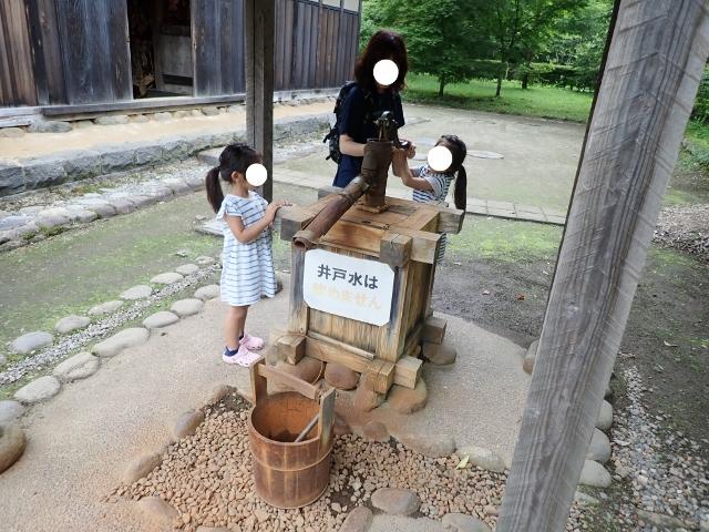 f:id:mochikichi-blog:20200611213054j:plain