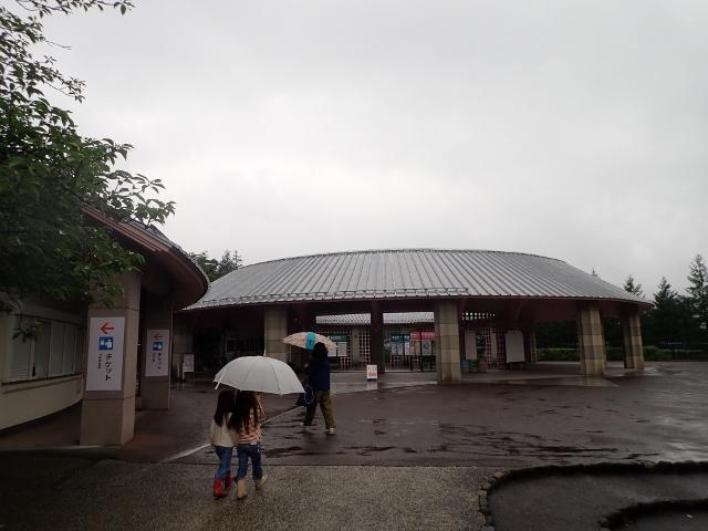 f:id:mochikichi-blog:20200611213704j:plain