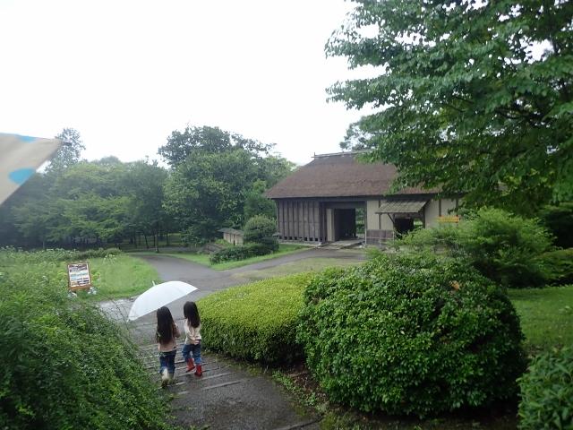 f:id:mochikichi-blog:20200611213710j:plain