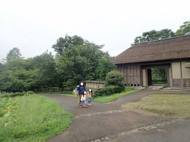 f:id:mochikichi-blog:20200611213744j:plain