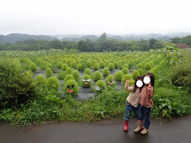 f:id:mochikichi-blog:20200611213755j:plain