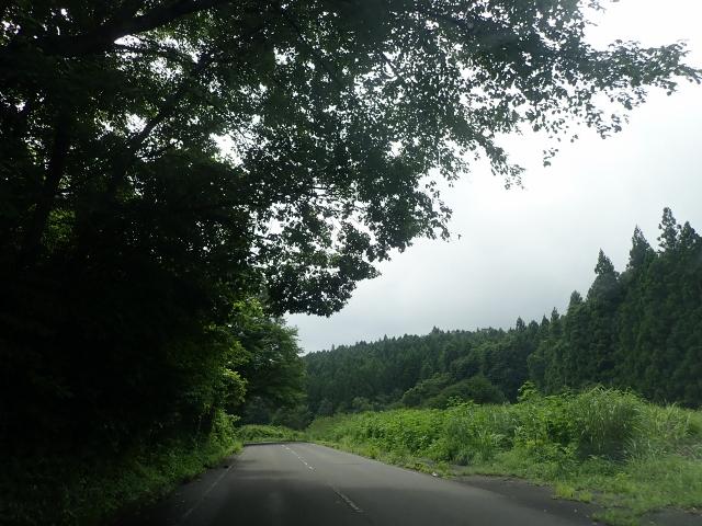 f:id:mochikichi-blog:20200611223939j:plain