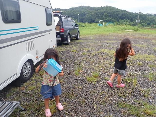 f:id:mochikichi-blog:20200612101626j:plain