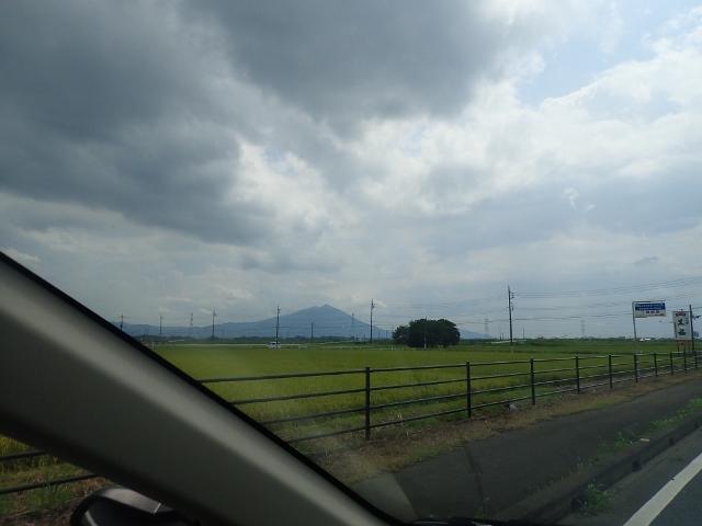 f:id:mochikichi-blog:20200612101646j:plain