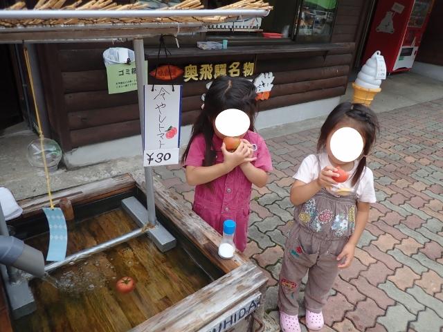 f:id:mochikichi-blog:20200612110135j:plain