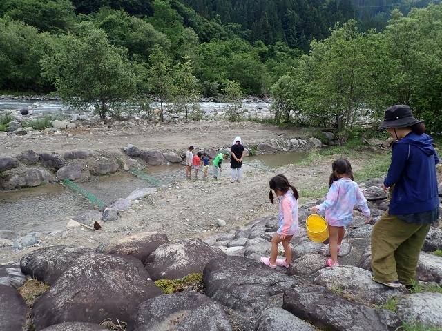 f:id:mochikichi-blog:20200612110203j:plain