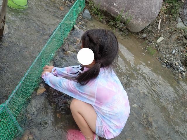 f:id:mochikichi-blog:20200612110209j:plain