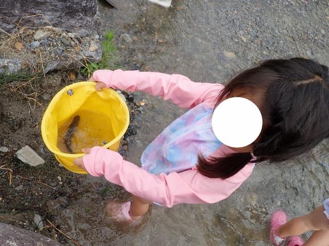 f:id:mochikichi-blog:20200612110221j:plain