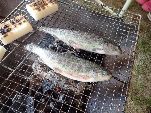 f:id:mochikichi-blog:20200612110245j:plain