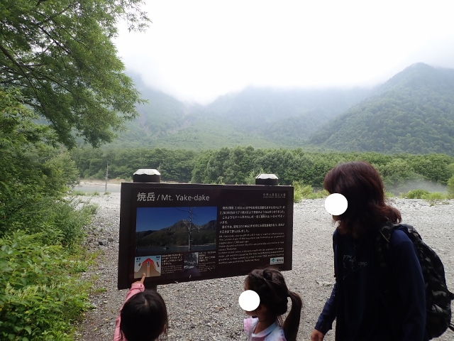 f:id:mochikichi-blog:20200612111516j:plain