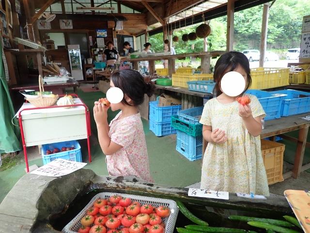 f:id:mochikichi-blog:20200612113701j:plain