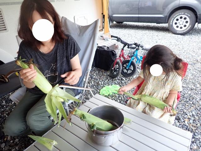 f:id:mochikichi-blog:20200612113820j:plain