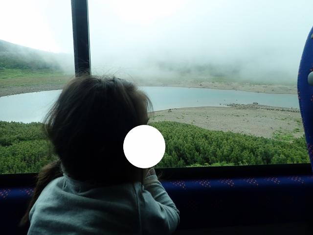 f:id:mochikichi-blog:20200612115039j:plain