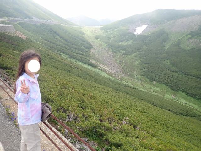 f:id:mochikichi-blog:20200612115306j:plain