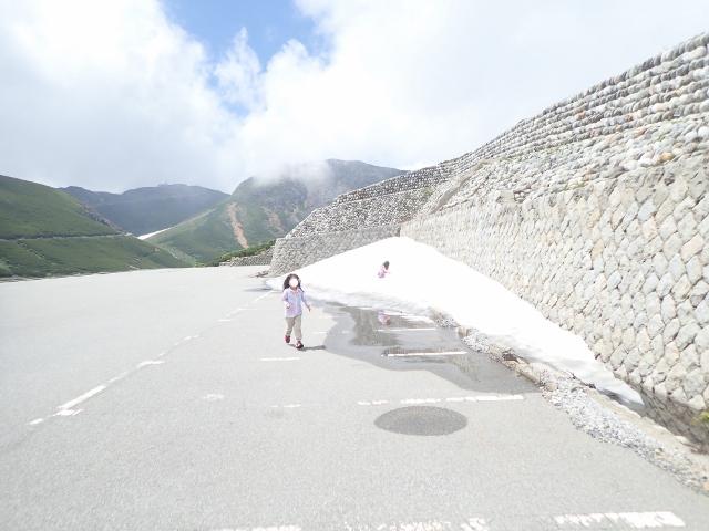f:id:mochikichi-blog:20200612115338j:plain