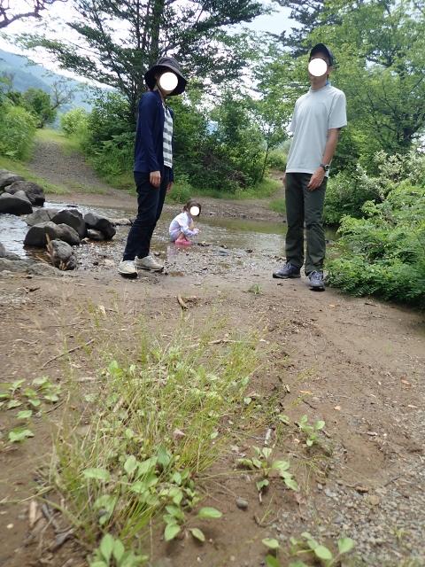 f:id:mochikichi-blog:20200612141716j:plain