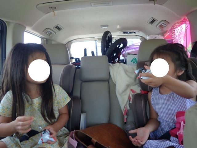 f:id:mochikichi-blog:20200612143302j:plain