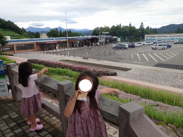 f:id:mochikichi-blog:20200612154117j:plain