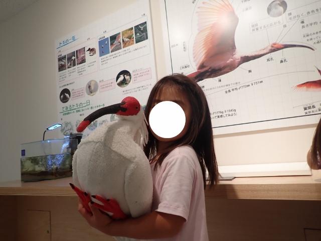 f:id:mochikichi-blog:20200612154318j:plain