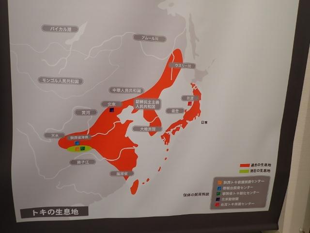 f:id:mochikichi-blog:20200612154323j:plain