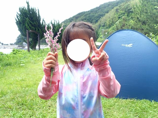 f:id:mochikichi-blog:20200612160034j:plain