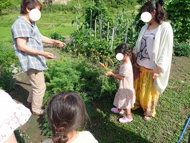 f:id:mochikichi-blog:20200612160145j:plain
