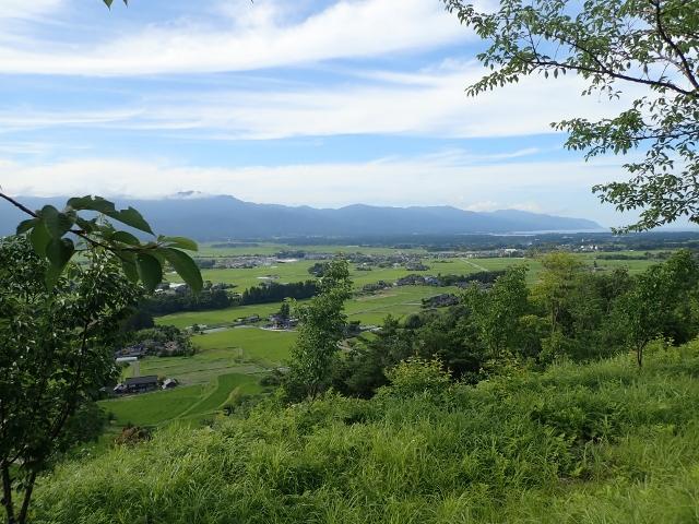 f:id:mochikichi-blog:20200612160217j:plain