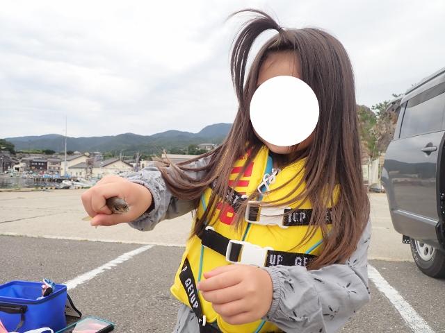f:id:mochikichi-blog:20200612161732j:plain