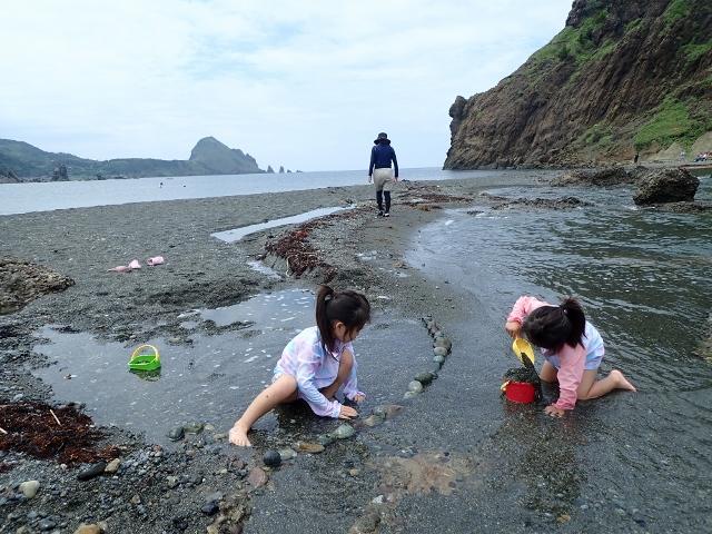 f:id:mochikichi-blog:20200612161846j:plain
