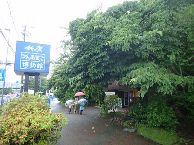 f:id:mochikichi-blog:20200612204747j:plain