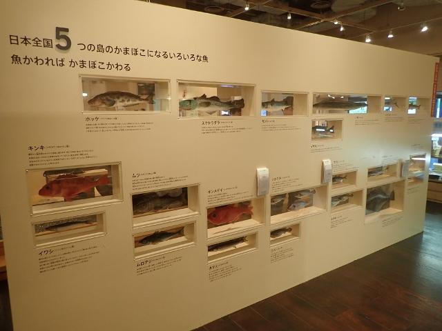 f:id:mochikichi-blog:20200612204830j:plain