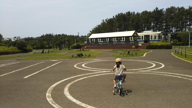 f:id:mochikichi-blog:20200612211004j:plain