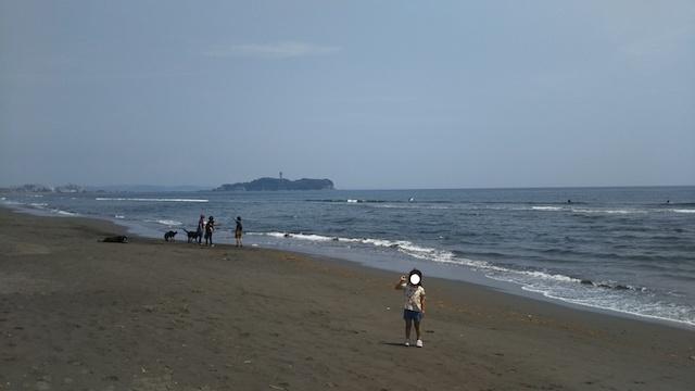 f:id:mochikichi-blog:20200612211026j:plain