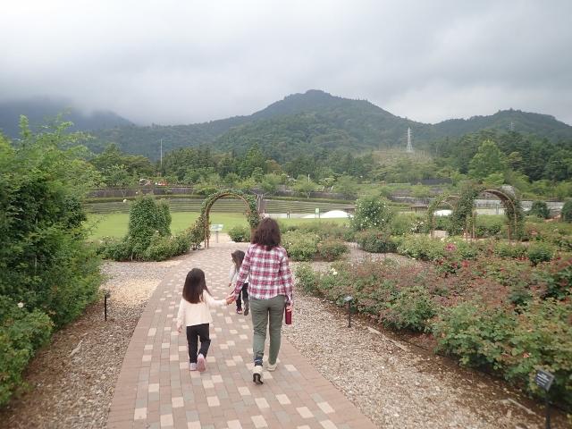 f:id:mochikichi-blog:20200612212153j:plain