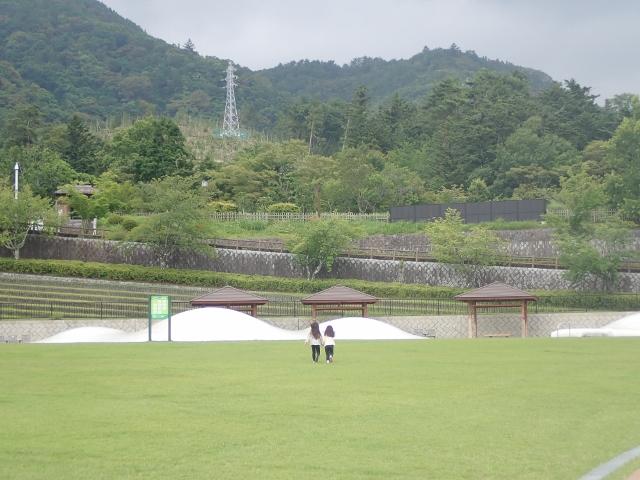 f:id:mochikichi-blog:20200612212200j:plain