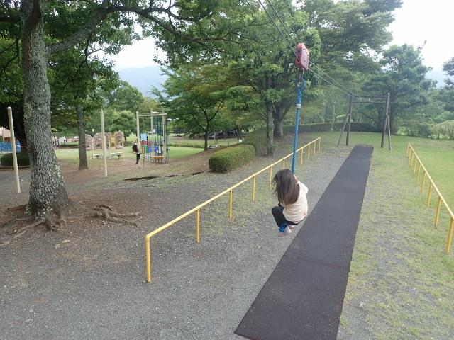 f:id:mochikichi-blog:20200612212244j:plain