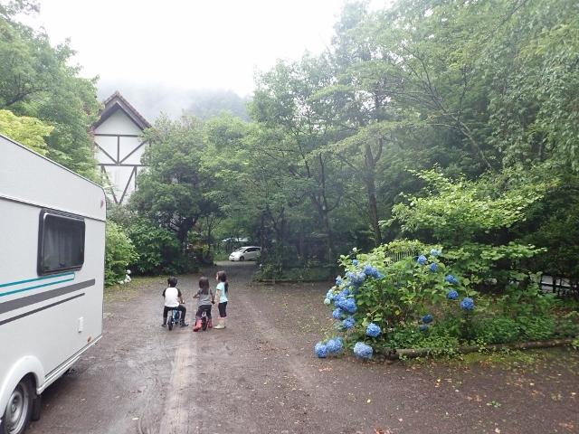 f:id:mochikichi-blog:20200612212355j:plain
